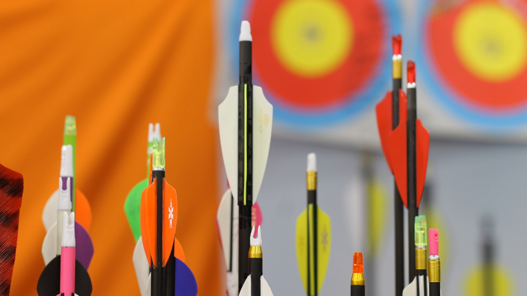 Best Target Arrows for a Compound Bow